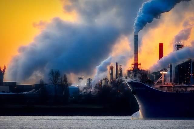 Business ecosostenibile: filosofia eco